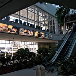 Myrtle Beach International Airport Jetport Road Myrtle Beach Sc